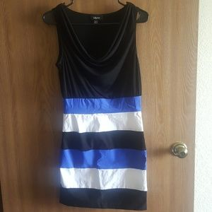 Sleeveless Short Form Fitting Dress